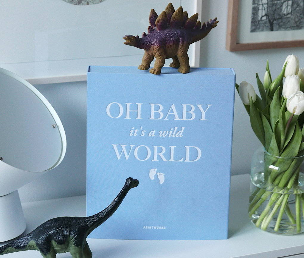 Photo Album - Baby it's a Wild World (Blue)